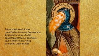 Беседа 31. Преподобный Иоасаф Ветковский