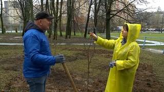 Лидеры движения «МЫ МЫТИЩИ» Денис Перепелицын и Михаил Мурзаков присоединились к  уборке города.