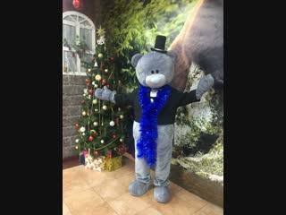 Мишка тедди екатеринбург (teddy bear #мишкатедди #teddybear #teddy #митуюмишки #metoyou )